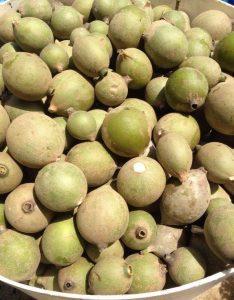 Jagua Jenipapo Frucht Jagua Gel